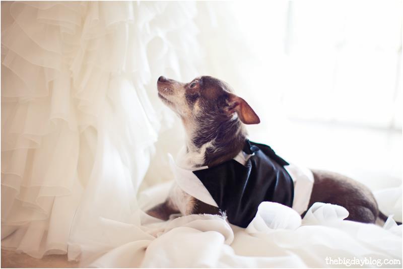 Islamorada_wedding_FL_Keys_photography_5