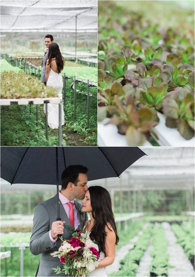 Palm-Beach-Wedding-Photographer-Swank-Farms_0018
